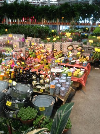 Olivia Plaza Hotel : Barcelona's flower market - Mercabarna-flor Masdesiete