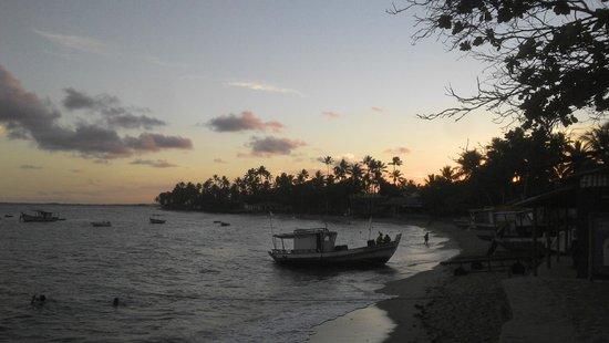 Praia do Forte: Fim de Tarde