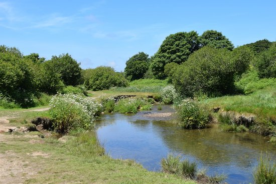 St Hilary, UK: The view along the tow path on River Hayle