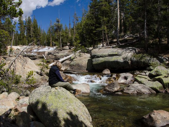 Tuolumne Meadows Lodge: Merced river at the Lodge