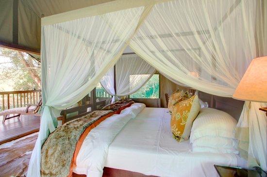 Botlierskop Private Game Reserve: Luxury tented suite
