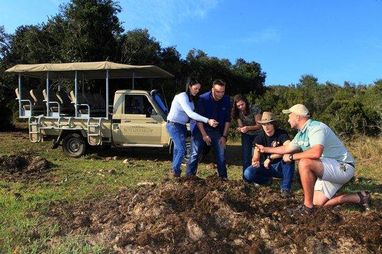Botlierskop Private Game Reserve: Bush walk