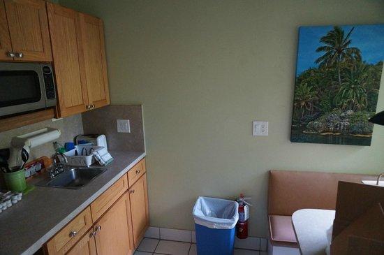 Suite Dreams Inn: Cocina muy bien equipada
