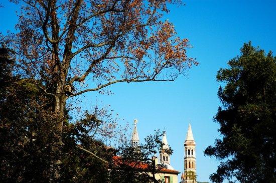 Orto Botanico di Padova : Il Santo