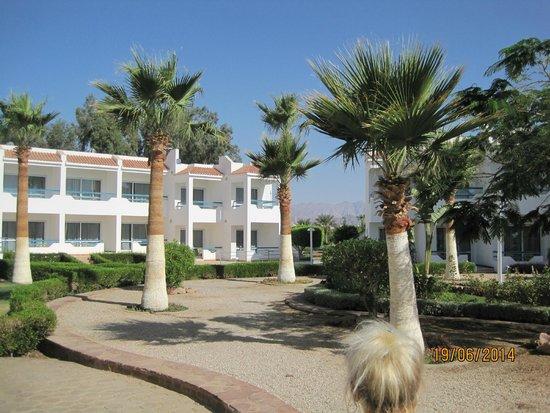 Dreams Beach Resort: Территория отеля