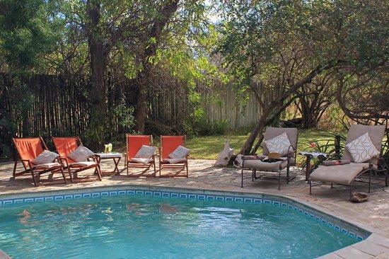 KwaMbili Game Lodge : Swimming pool