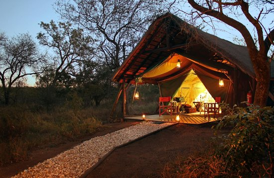 KwaMbili Game Lodge: Choose between tent or chalet