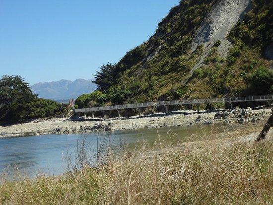 Kaikoura Peninsula Walkway : Elevated walkway above mud flats