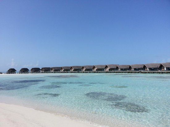 Cocoa Island by COMO : Rooms are located privately