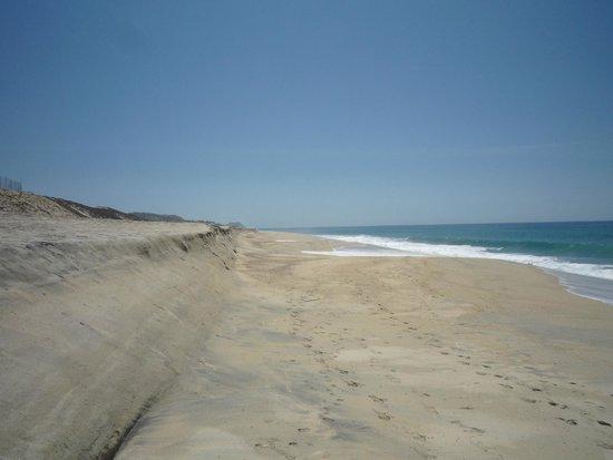 Secrets Puerto Los Cabos Golf & Spa Resort : Beach