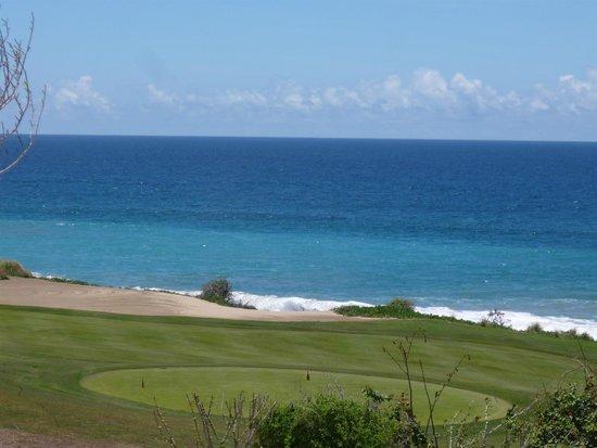 Secrets Puerto Los Cabos Golf & Spa Resort : Quiet Pool view