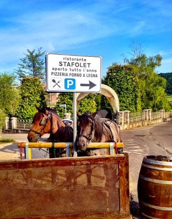 Steak house Stafolet: Resturant horses and cart waiting to collect patrons!
