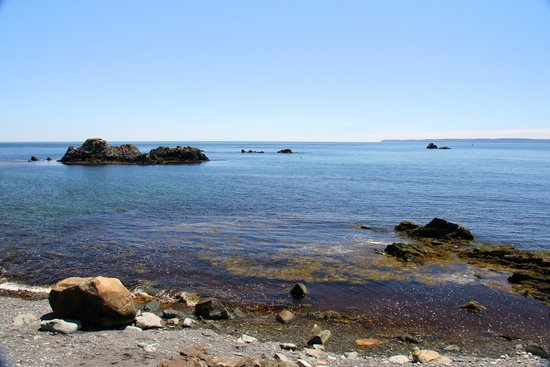 Beach at Quoddy Head State Park