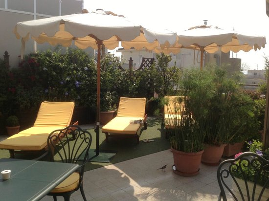 Marcella Royal Hotel: Sunbeds on the roof!