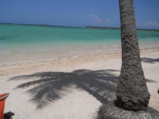 Bavaro Beach: Que mas podes pedir ?