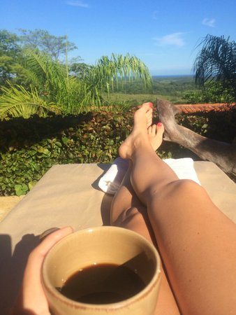 Los Altos de Eros: Costa Rican coffee overlooking forest and ocean
