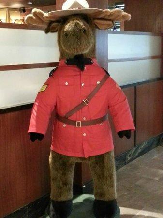 Sheraton Gateway Hotel Toronto Airport : Friendly greeter