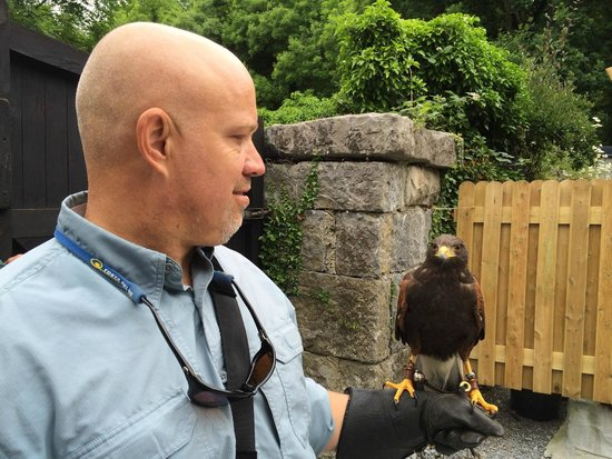 Ireland's School of Falconry : Holding Fohmer (sp ?)