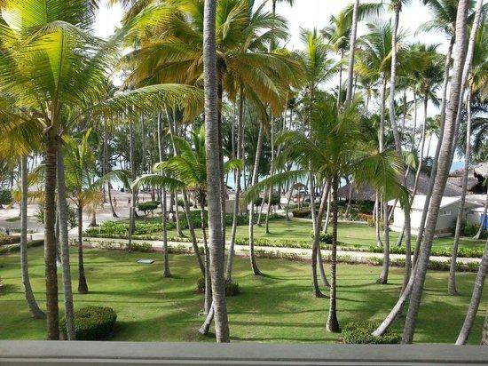 Vista Sol Punta Cana: Vista de la habitacion!! Que rico levantarse con esta belleza!! ♥