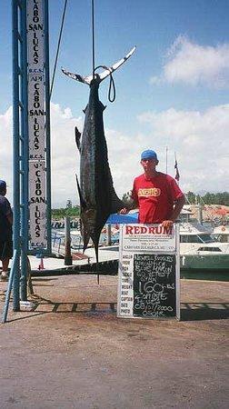 Marina Fiesta Resort & Spa: Big catch