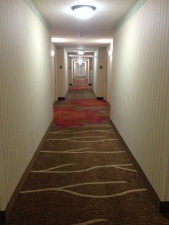Hilton Garden Inn Rock Hill: Hallway 4th Floor