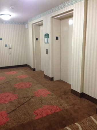 Hilton Garden Inn Rock Hill: Elevator area 4th Floor