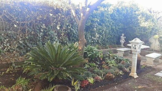 Elizabeth's Manor Guesthouse: View of the garden