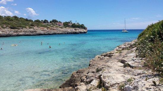 Club Jumbo Palma: plage/ cric
