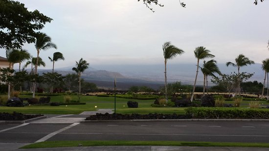 Kings' Land by Hilton Grand Vacations : View walking around the grounds