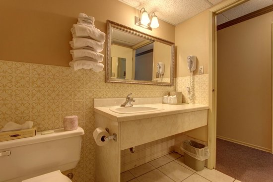 Owen Sound Inn: Bathroom