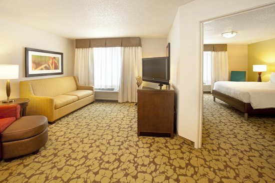 Hilton Garden Inn Minneapolis Eden Prairie: 1 King 1 Bedroom Deluxe Suite With  Sofabed