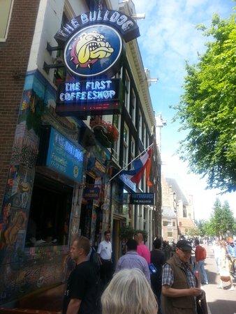The Bulldog Amsterdam: right outside bulldog