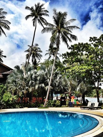 Vivanta by Taj Rebak Island, Langkawi : Poolside