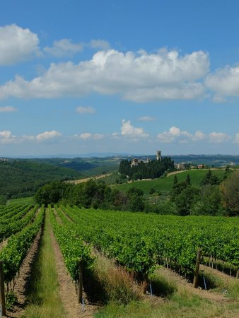 Tours in Tuscany - Private Tours: Tuscany