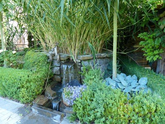 B&B 't Plein: Le jardin