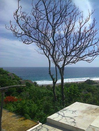 Casa Mermejita: Vista de la Playa desde su Casa, la Mermejita
