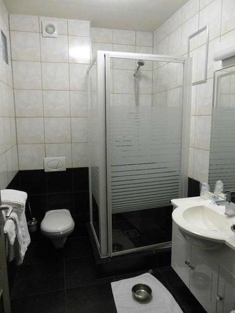 B&B 't Plein: La salle de bains