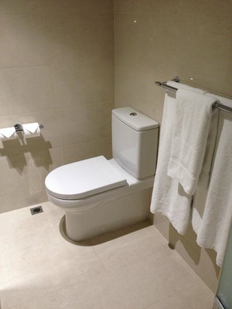Four Points by Sheraton Perth: WC