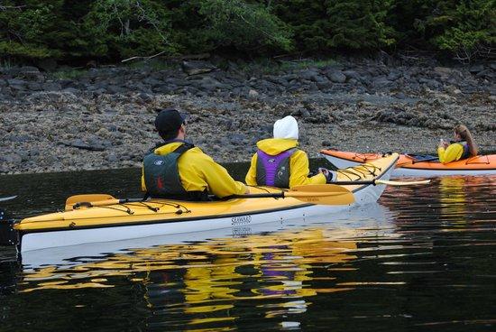 Ketchikan Kayak Co: We saw minks running along the banks...