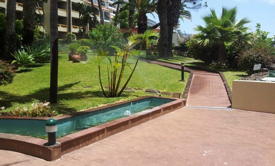 Pestana Palms Ocean Aparthotel: Gardens