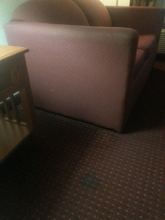 Econo Lodge Airport at Raymond James Stadium: Stained floor and furniture. Filthy room.