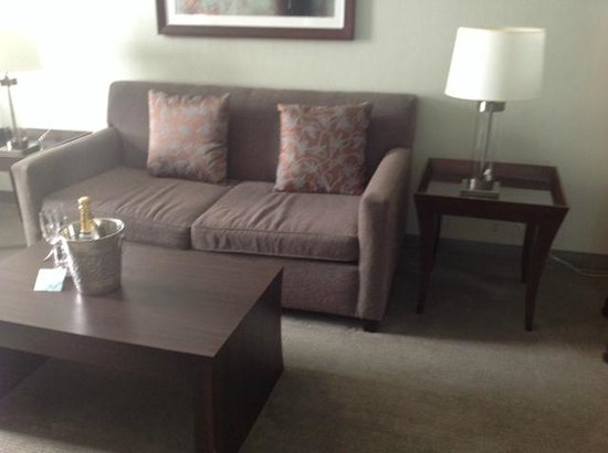 The Westin Book Cadillac Detroit: Couch was LOW but comfortable ;)