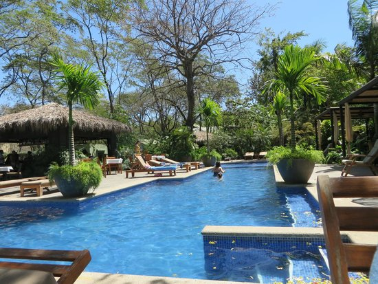 Langosta Beach Club : Pool