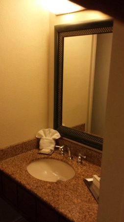 Hilton Orlando Lake Buena Vista - Disney Springs™ Area: Bathroom vanity