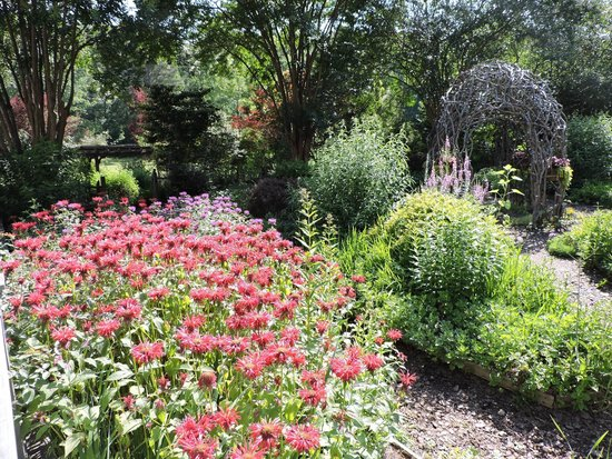 Glen-Ella Springs Inn : Beautiful perennial garden