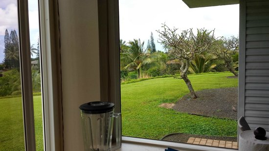Cliffs at Princeville: view from our kitchen