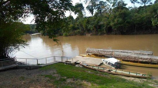 Amazon Camp Lodge: Vista desde la habitación, Río Momon