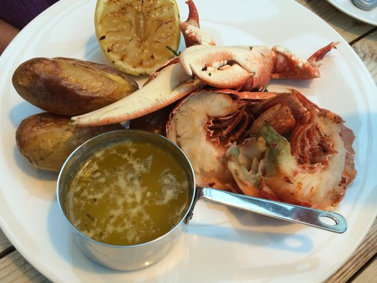 The Ilchester Arms Hotel Restaurant: Locally caught fresh lobster