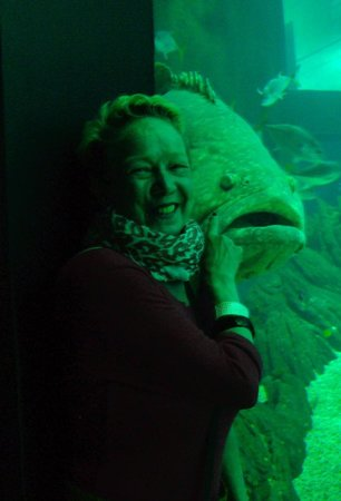 Lisbon Oceanarium : The center of the Oceanario gives you great picture opportunities