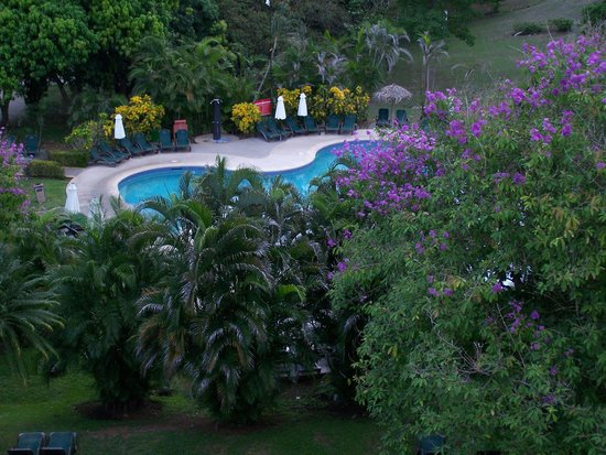 Occidental Papagayo - Adults only: View from our balcony